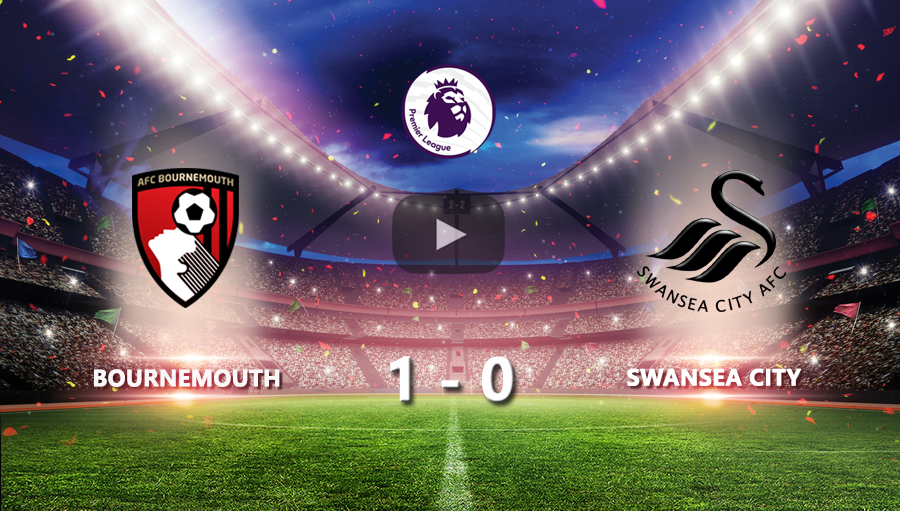 Bournemouth 1-0 Swansea City