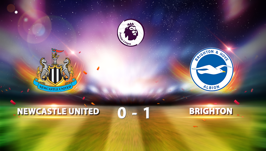 Newcastle United 0-1 Brighton