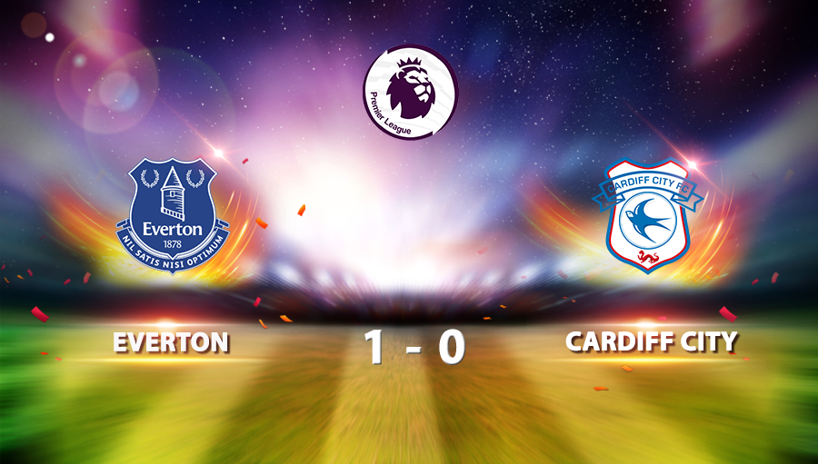 Everton 1-0 Cardiff City