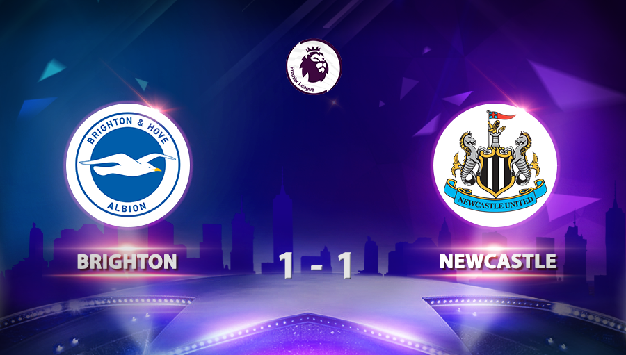 Brighton 1-1 Newcastle