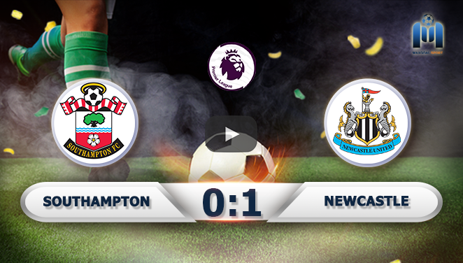 Southampton 0-1 Newcastle